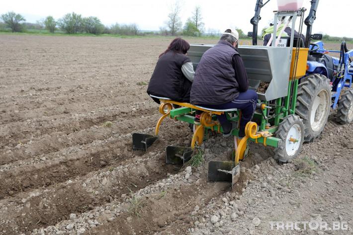 Машини за зеленчуци Двуредов картофосадач с торовнасяне за рътен картоф 3 - Трактор БГ